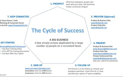 Monday Motivational Call: The Cycle of Success